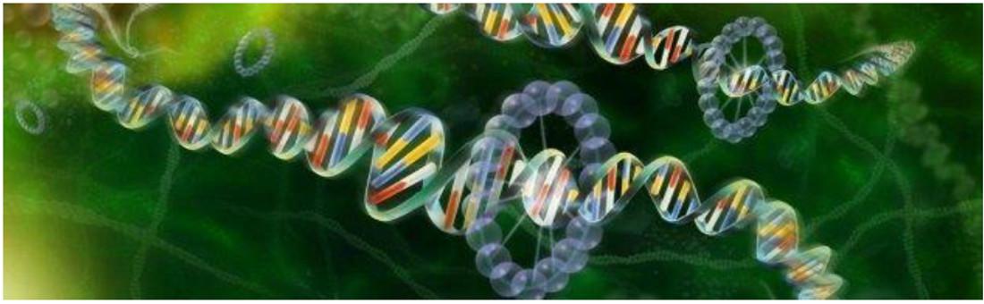 Master_Genomica_Pavia