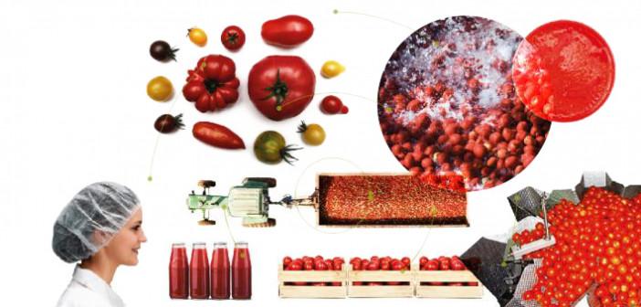 Lavazza partner del Master in Design for Food promosso da Poli Design